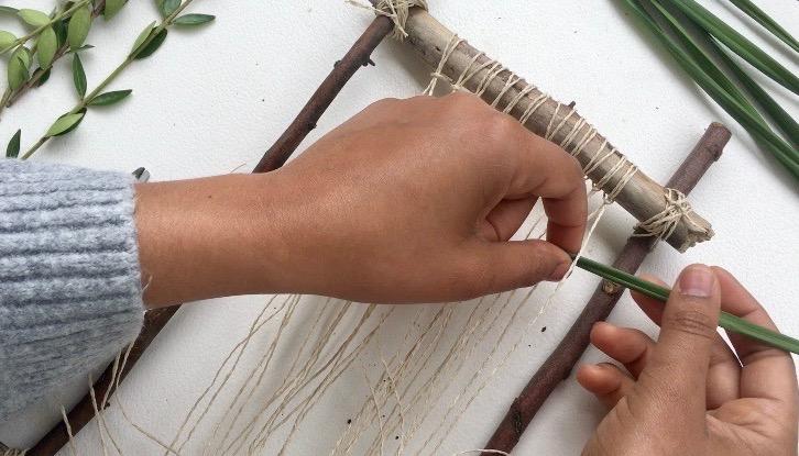 weave plants